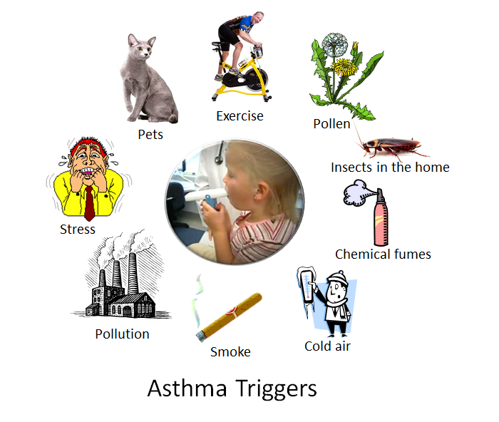 Asthma_triggers.png