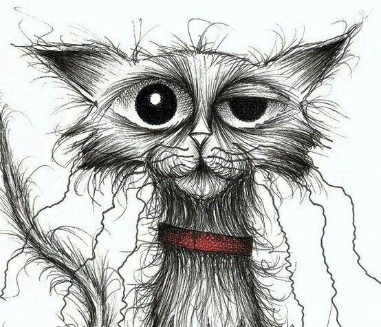 chroniccat